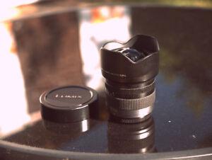 Panasonic Lumix 7-14mm lens