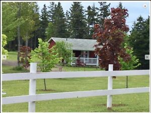 Featuring Cottage 1 at Inn the Woods, PEI