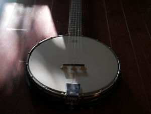 5 String Gold Tone Banjo (with Schatten pickup) + case