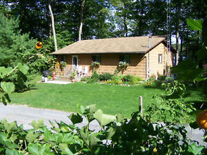 Cottage For Sale - 8994B Canoe Lake Road