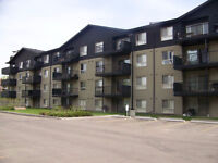 """""""Callingwood Furnished"""" w/insuite laundry and 1 parkade stall"""