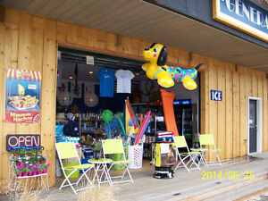 General/Convenience Store on Beautiful Skaha Lake, Penticton