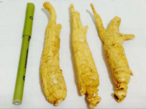 Ginseng for sale