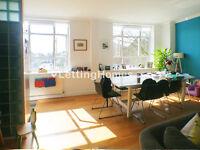 SPECTACULAR - 2DOUBLE BEDROOM - 1 BATHROOM - HUGHE RECEPTION & semi-open kitchen FLAT - big windows