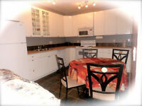 Deluxe Inlaw Suite with 2 bedrooms