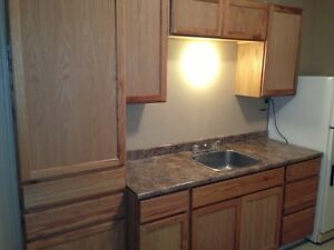 North End - 119 Metcalf - 2 bedroom - Available anytime!