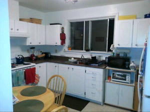 Two bedroom apartment fully furnished all inclusive May 1st