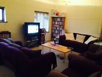 Very affordable house share available in Acton