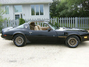 1981 Trans Am Special Edition with PHS Documentation