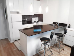 Furnished Jr. 1 bedroom (Downtown Vancouver) Available June 20th