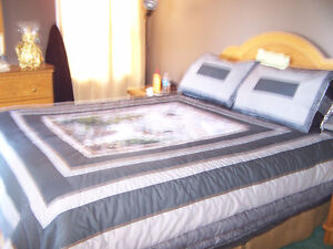 Home Made Queen size quilt with Eagles