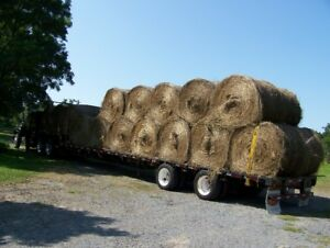Hay for sale joyceville area SOLD