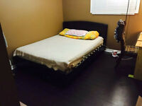 Beautiful room close to UWO available right now!!!!!!!