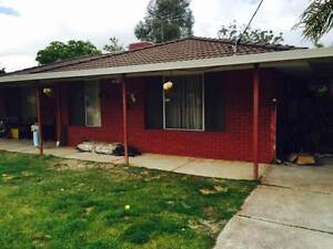 NEAT HOUSE 4X1 IN GOSNELLS, FR $380PW.HOMEWEST BOND/PETS OK Gosnells Gosnells Area Preview