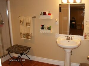 Beautiful Pedestal Sink, with Faucets as well as lights