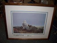 Snowy Owl Signed Print by Canadian Artist Lissa Calvert