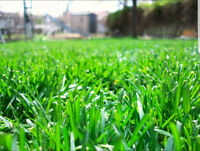 *->GRASS CUTTING // Lawn Care* $80 + ! ->*SIGN-UP 2018 TODAY* !!