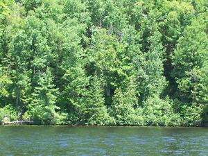 Terrain Grandes-Piles, rivière St-Maurice