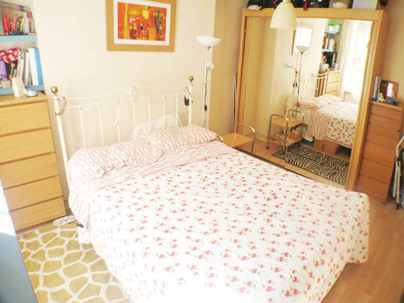 2/3 DOUBLE Bed flat, seconds from tube, WOOD FLOORS, MODERN SEPARATE KITCHEN, MOSAIC TILED BATHROOM