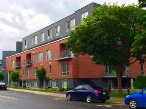 3 1/2 Condo For Rent - Bord Du Lac (Lakeshore), Dorval - 1200$