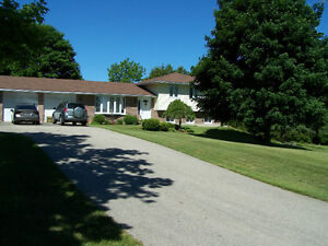 Country home on 2.3 acres close to amenities.