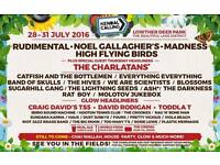 Kendal Calling Festival 2016 - Volunteer and see the best bands & DJ's for free with your mates!