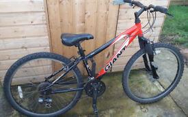 Giant mountain bike XS
