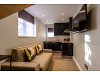 113-1 - Brand new Luxury 1 Bedroom Flat 10 min to Baker Street Available from 28 of January 2018 !!!