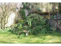 Garden rubbish removal service