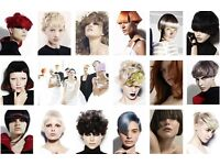 (October appointments available now)Hair models for creative free Hair Cut and Colour