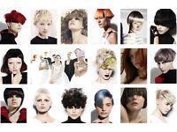 Hair models for creative free Hair Cut and Colour