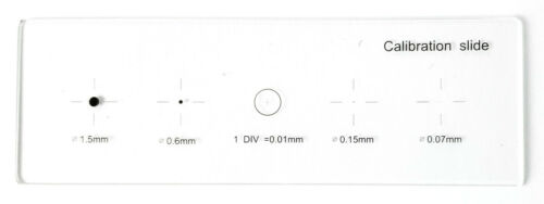 Microscope Stage Micrometer Calibration Slide, 5-Scales,  0.01mm Line Resolution
