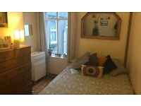 PONTCANNA - Lovely large double room available Now