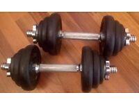 York 20 kg Black Cast Iron Dumbell Set