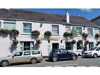 HEAD CHEF required for busy country pub in Devon