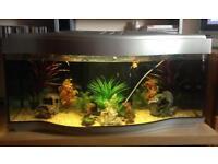 130L Fish Tank