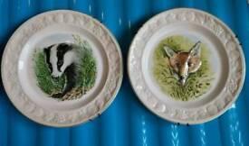 2 x Palissy royal Worcester spoke plates