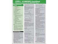 2021 CFA Level 1-2-3 Curriculum, Schweser QBank, Schweser Exams Secret Sauce, Schweser Study Notes