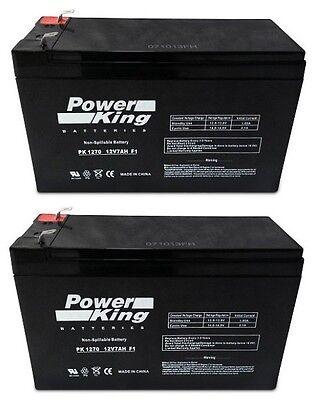 Razor Scooter Pocket Mod Batteries (2) Pack All Models