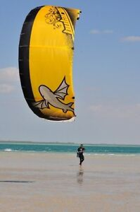Best Kiteboarding Kite 9 meter