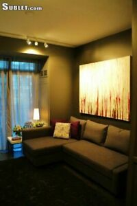 Upgraded Furnished Studio in New Boutique King West Complex