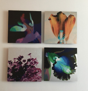 Celeste Brunel photographic art - wall hangings