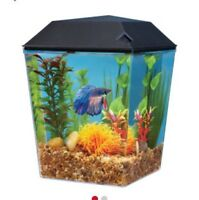 Looking for plastic one gallon fish tank