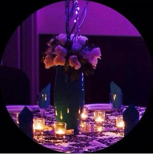 Affordable Decor for weddings & all Occasions. Kitchener / Waterloo Kitchener Area image 1