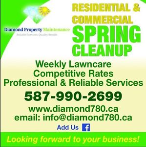 Spring clean up & Weekly lawn care