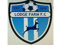 Lodge Farm Mini kickers 3-6 year olds