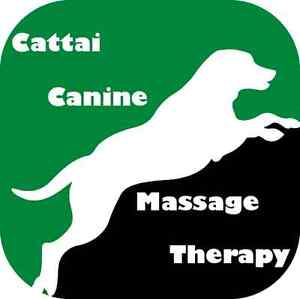 Cattai Canine Massage Therapy The Hills District Preview