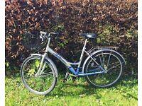 Bike Ammaco