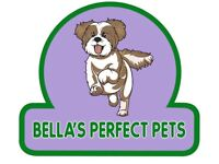 Pet Sitter / Dog Walking!!! Qualified and DBS checked!