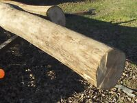 Solid cherry logs